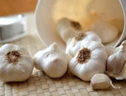 Obat Herbal Kanker dengan Bawang Putih